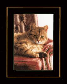 Luierende Kat Lanarte Telpakket