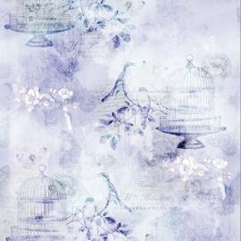 MRD_20-70-Lavender