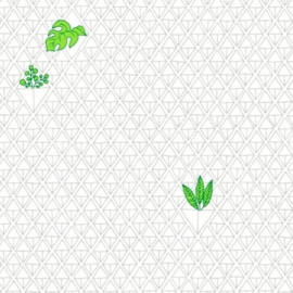 FT_house-of-plants-white
