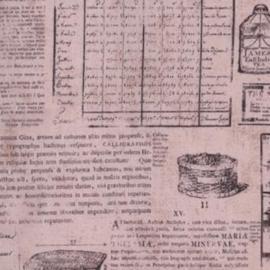 News Print-Taupe