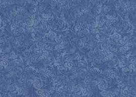 EC_C5500-blue