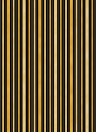 Stripe_107