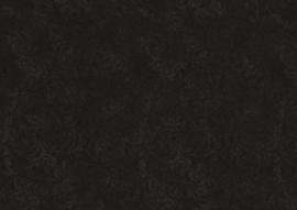EC_C5500-black