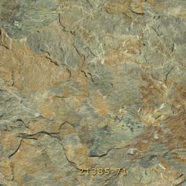 NSC-21385-71