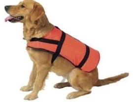 Zwemvest voor de hond