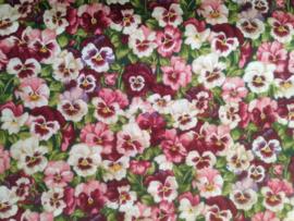 Summer Garden Pansy 1289 Pink
