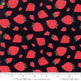 Farm Fresh Kettle Strawberry Patch 48263-12