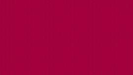 Bijoux 42 Vee Cherry 8706-R