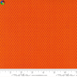 Jungle Paradise Orange 20788-15