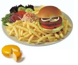 Patat groot bord met een broodje hamburger kaas varkens inc. mayonaise of ketchup
