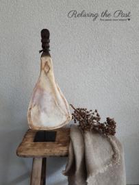Ornament Scapula