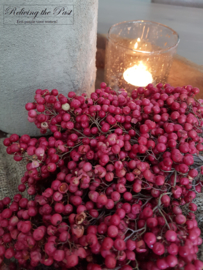 Bosje peperberry roze