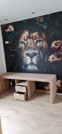 bureau lion