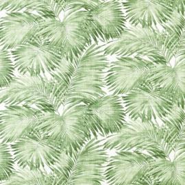 B: Groen palmbladeren