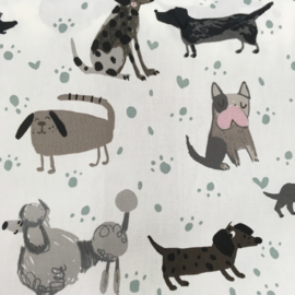 B*: Hond
