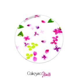 Glitter.Cakey - Spring Garden (Pink&Purple) 'THE SLICES'