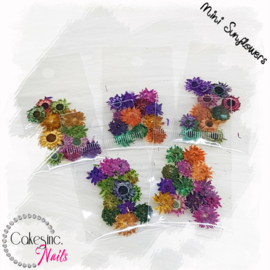 Mini Sunflowers - Mixed Pack