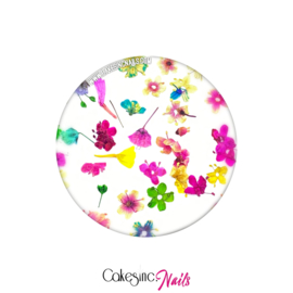 "CakesInc.Nails - Dried Flowers ""Summer Inspired Mixed-Pack"""