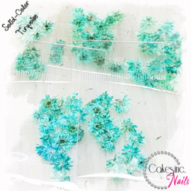 Winter Flowers - Turquoise