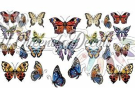 Queen of Decals - Large Butterflies 'NEW RELEASE'