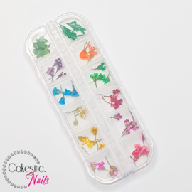 Glitter.Cakey - Baby Flowers 'Mixed Set Case'
