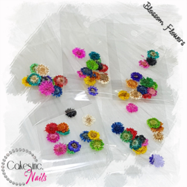 Blossom Flowers - Mixed Pack