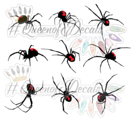 Queen of Decals -  Giant Black Widow Spiders (The Ultimate)