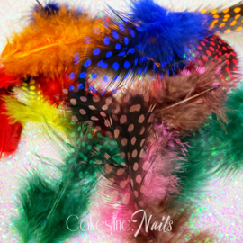 Glitter.Cakey - Polka Dots Feathers