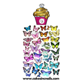CakesInc.Nails - Rainbow Butterflies 'NAIL DECALS'