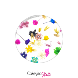 "CakesInc.Nails - Dried Flowers ""Spring Inspired Mixed-Pack"""