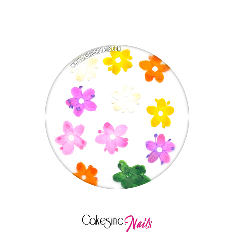 "CakesInc.Nails - Arcoiris Dried Flowers ""Solid-Color Mixed 2"""