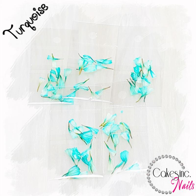 Dream Flowers - Turquoise