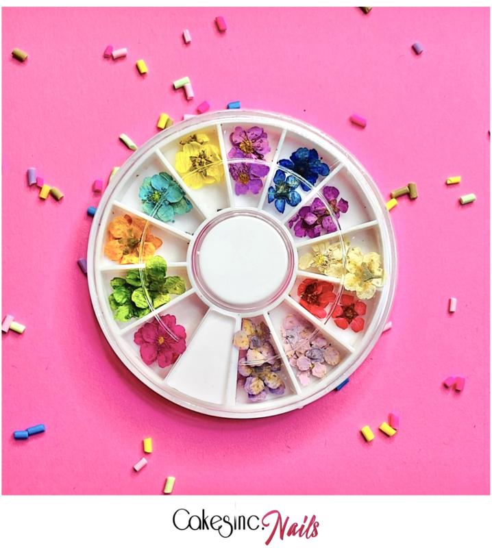 CakesInc.Nails - Daisy Flowers 'Mixed Wheel'