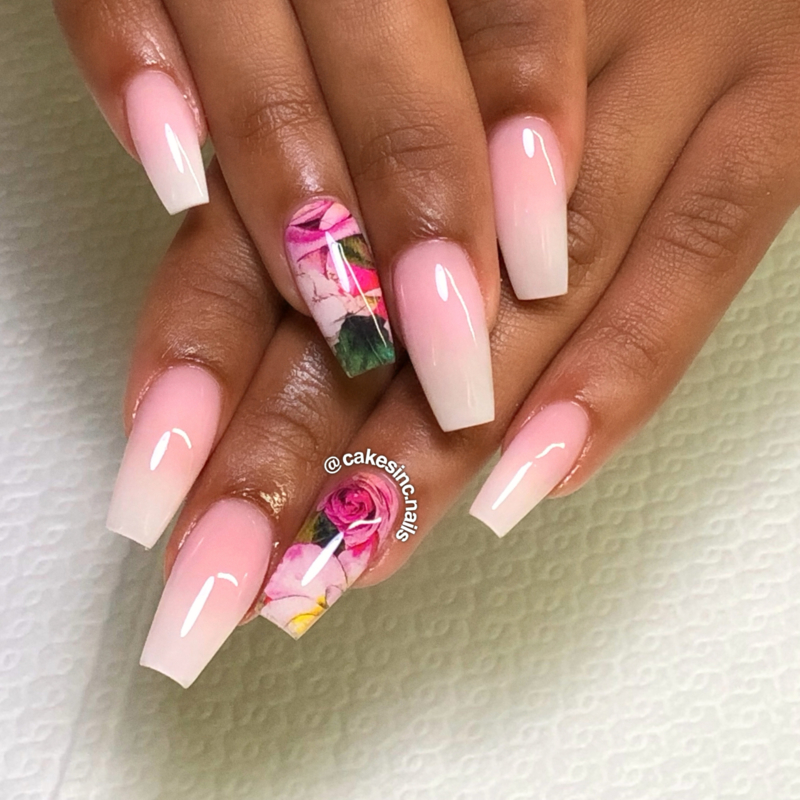 Queen of Decals - Bed of Roses 'The Ultimate Collection'