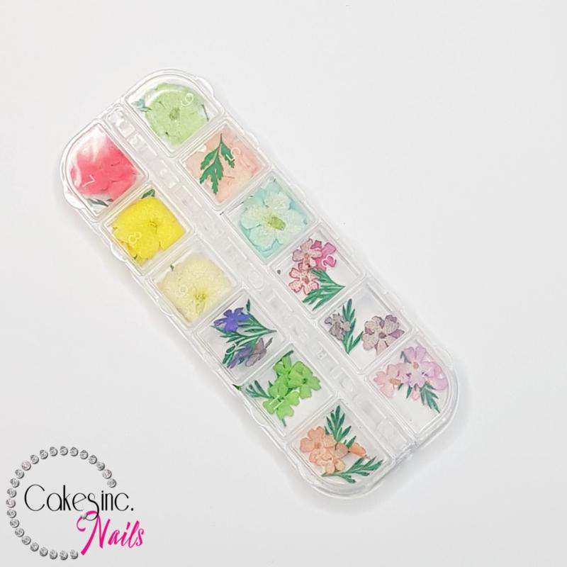 Glitter.Cakey - Cassia Flowers 'Mixed Set Case'