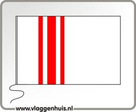 Vlag gemeente Oisterwijk