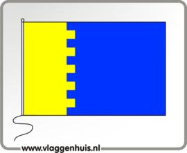 Vlag gemeente Reiderland