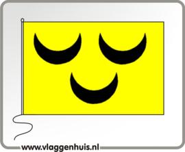 Vlag gemeente Voorschoten