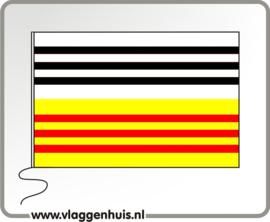 Vlag gemeente Loonopzand