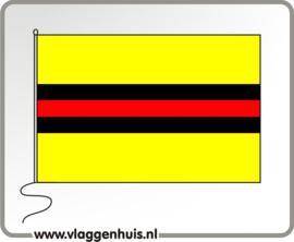 Vlag gemeente Woudenberg