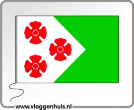 Vlag gemeente Maasdonk