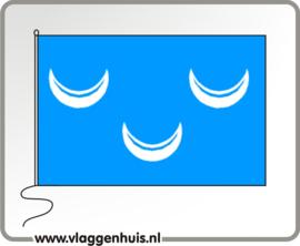 Vlag gemeente Wassenaar