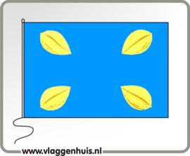 Vlag gemeente Hilversum