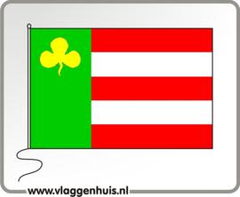 Vlag gemeente Boornsterhem