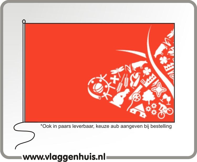 Vlag gemeente OostGelre