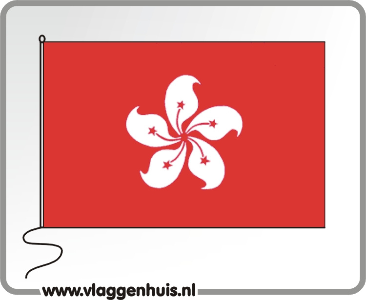 Tafelvlag Hongkong 10x15 cm