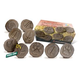 Op ontdekking! - Pootafdrukken boerderijdieren (set van 8 stenen)