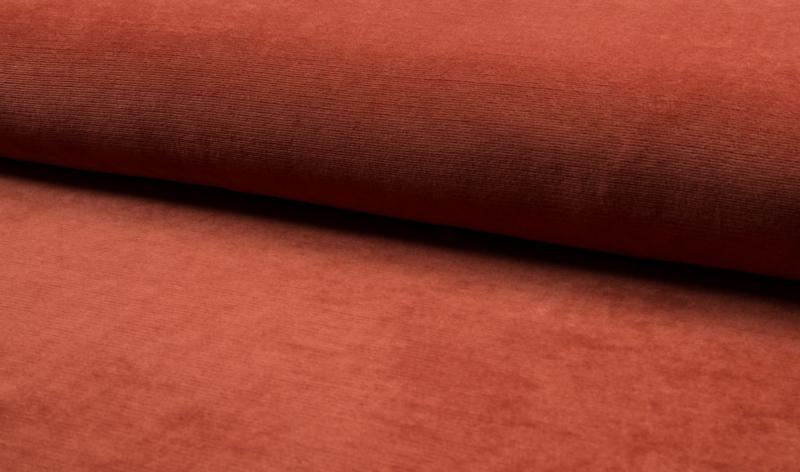 Ribvelours fine rib Terracotta