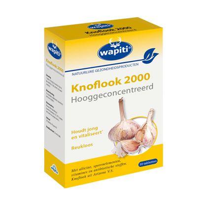Knoflook 2000