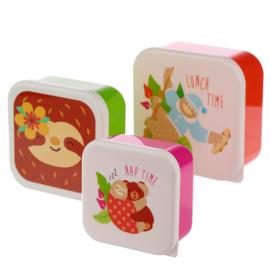 Set van 3 snackboxen Sloth - luiaard